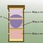 Особенности узковысокого улья-дупла