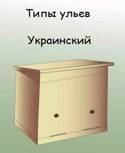 Украинский улей