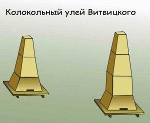улей Витвицкого