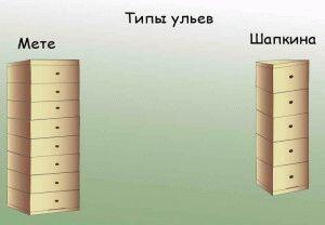 Ульи Мете и Шапкина