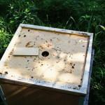 Удалитель для пчёл