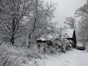 Вот и зима